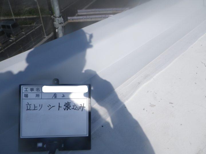 塩ビシート防水/笠木⑦