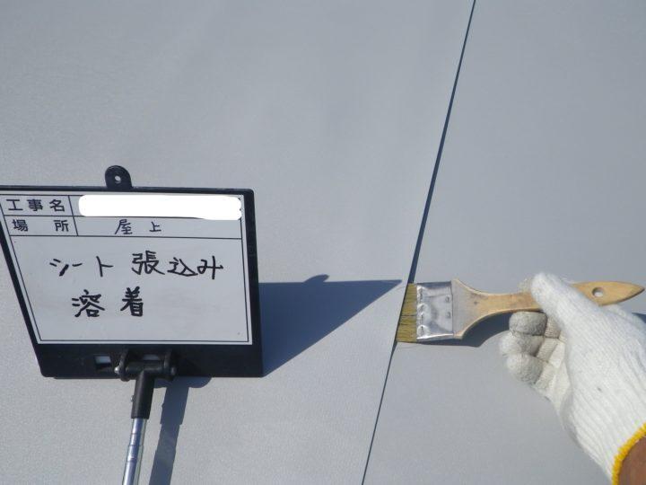 塩ビシート防水/平場⑪