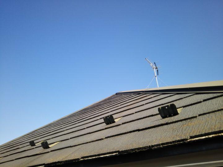 屋根:コケ