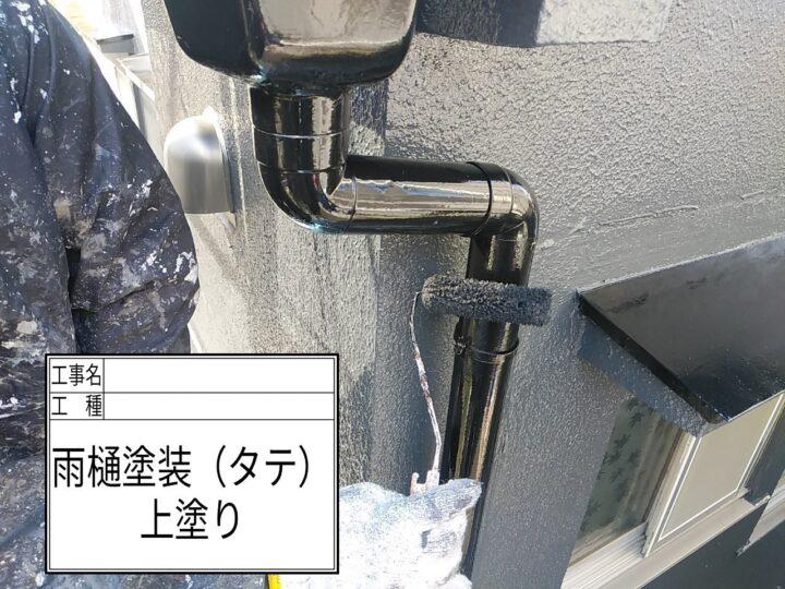竪樋塗装④